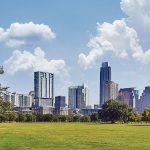 La cura del verde in città